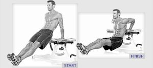 bench dips, shoulder workouts